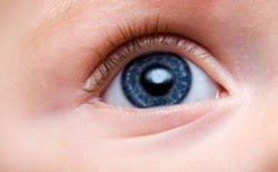 Kesempurnaan dan Detail Menakjubkan Di Dalam Mata Manusia